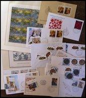 SAN MARINO Brief,o,** , 1975-95, Kleines Lot Von 13 FDC`s, 3 Blocks, Einem Kleinbogen Und Einigen Einzelmarken, Pracht - San Marino
