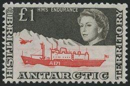 BRITISCHE GEBIETE IN DER 24 **, 1969, 1 £ Antarktisforschung, Pracht, Mi. 250.- - Britisches Antarktis-Territorium  (BAT)