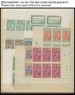 KAMERUN **,* , 1916-43, Reichhaltige, überwiegend Postfrische Partie Mit Vielen Bogenteilen, Meist Prachterhaltung - Kamerun (1960-...)