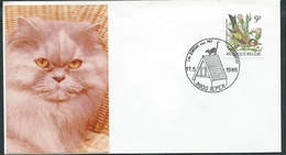 Belgium, Belgique, Belgio 1986; IEPER : Gatto Sul Tetto, Chat Sur Le Toit, Cat On The Roof - Gatti