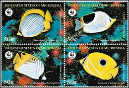 Micronesia 1997, WWF Butterflyfish - 4 V. MNH - W.W.F.
