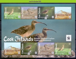 Nfa015MSb WWF FAUNA VOGELS BRISTLE-THIGHED CURLEW BIRDS VÖGEL AVES OISEAUX COOK ISLANDS 2017 PF/MNH - W.W.F.