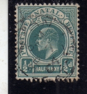 NATAL SOUTH AFRICA SUD AFRICA 1902 1903 KING EDWARD VII RE EDOARDO ONE PENNY 1 P  USATO USED - Sud Africa (...-1961)