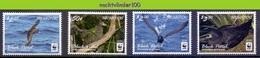 Nfa019s WWF FAUNA VOGELS BLACK PETREL BIRDS VÖGEL AVES OISEAUX NIUAFO'OU 2016 PF/MNH - W.W.F.