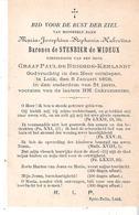 Faire-part Décès De Maria Hubertine Barones De STENBIER De WIDEUX LIEGE 8/1/1898. - Décès