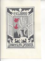 Ex Libris.90mm125mm. - Bookmarks