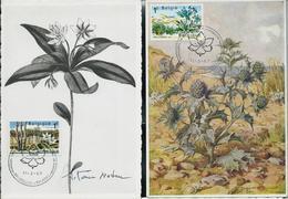 CM Du N° 1408/9  Conservation De La Nature (Hautes-Fagnes Et Westhoek)  Obl. Bxl 11/03/67 - Maximum Cards