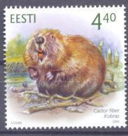 2005. Estonia, Beaver, 1v, Mint/** - Estonia