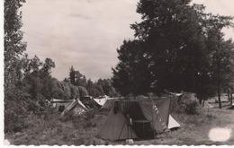 CPSM Petit Format :  Selles Sur Cher , Le Camping - Selles Sur Cher