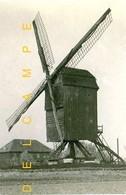DILBEEK (Vlaams-Brabant) - Molen/moulin - Zeldzame En Fraaie Close-up Van De Verdwenen Palokemolen - Dilbeek