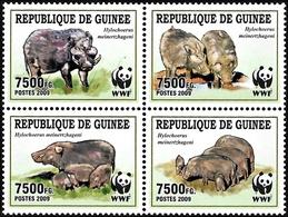 Guinea 2009, WWF Animals Giant Forest Hog - 4 V. MNH - W.W.F.