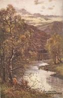 """""""A. De Breanski. The Birches. Borrowdale.Tuick Oilette Picturesque Eglish Lakes Ser. PC # 7895 - Tuck, Raphael"""