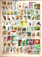 VRAC + De 800 Timbres Oblitérés MONDE - 12 - Stamps