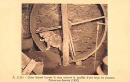 Bohan-sur-Semois - Chien Faisant Tourner La Roue Activant Le Soufflet D'une Forge De Cloutiers - Vresse-sur-Semois