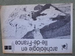 L'archéologie En Ile De France 1991 - Archéologie
