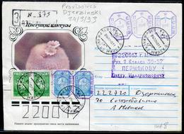 BIELORUSSIE - LR AVEC PROVISOIRE DE DJERZINSKI LE 24/3/1993 - TB - Belarus