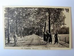 BELGIË - ANTWERPEN - KAPELLEN - Bloemenlei - Kapellen