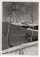 OBERSAXEN Wintermorgen Ski Valgrondagruppe Stempel Pension Alig Affeier - GR Grisons