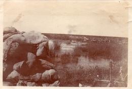 PHOTO BELGIQUE - CHAMP DE BATAILLE SECTEUR DE RAMPSCAPELLE PRES NIEUPORT BELGIQUE BELGIE 1917 - GUERRE 1914 1918 - 1914-18