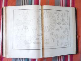 Planche Technologie 39 1836 Moulinage Des Soies Noeuds - Technical Plans