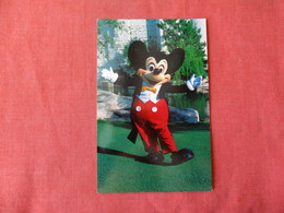 Mickey Mouse    Disneyworld   Ref 3167 - Disneyworld