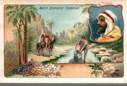 CHROMO CH. LEBORGNE BRUXELLES  NOTRE DOMAINE COLONIAL  L'ALGERIE - Chromos