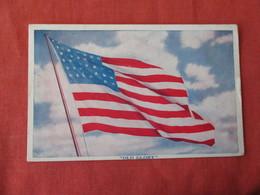 US Flag  Old Glory   Ref 3167 - Patriotic