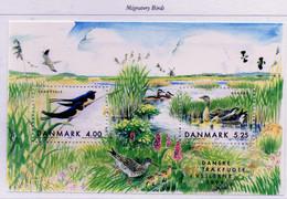 PIA - DANIMARCA -1999 : Fauna - Uccelli Migratori  - (Yv  Bf 14 ) - Blocchi & Foglietti