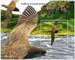 TAAF 2019 Block MNH  Puffins à Pieds Pâles En Vol  Birds Bird Oiseaux Oiseau - Vogels