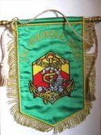 ANCIEN FANION DES TROUPES DE MARINE DU 3° RIMa 4° COMPAGNIE LES CAPORAUX CHEFS CANETILLE ETAT EXCELLENT - Armée De Terre
