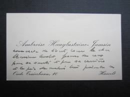 CARTE DE VISITE (M1611) AMBROISE HANGLUSTAINE - JAMSIN (2 Vues) Oude Truierbaan HASSELT - Visiting Cards