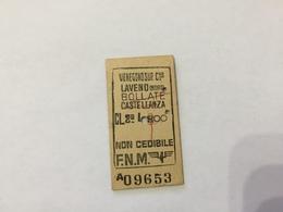 BIGLIETTO TRENO FERROVIE NORD MILANO VENEGONO LAVENO BOLLATE CASTELLANZA  1976 - Titres De Transport
