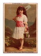 CHROMO Liebig S3 Enfant Fille Fillette Seau Pelle 4 Médailles D'or 3 Grands Diplômes 9 Millions Versés S 3 - Liebig