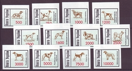 UKRAINE 1995. SUMY. LOCAL PROVISORY STAMPS ''HUNTING DOGS''. Set Of 12 Values. Mint (**) - Ukraine