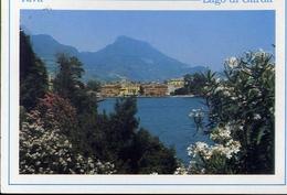 Riva - Panorama - Lago Di Garda - 2932 - Formato Grande Viaggiata – E 10 - Trento