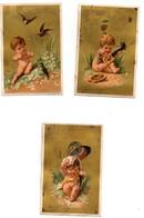 CHROMO Liebig Testu Et Massin S 28 5 Médailles D'or 3 Grands Diplômes S28 Enfants Chérubins Amours La Série 12 Chromos - Liebig