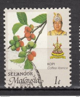 Malaysie, Selangor, Café, Coffee, Agriculture - Alimentation