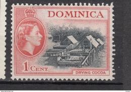 Dominica, MH, Cacao, Cocoa, Élizabeth II - Alimentation