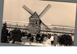 Cpa Dos Nu, Photo ? 5ème Floralies Valenciennoises Valencienne 59 Nord 1954 Moulin à Vent - Photos