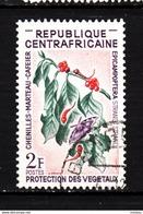 République Centrafricaine, Café, Coffee, Papillon, Butterfly, Chenille, Caterpillar, Insecte Nuisible - Alimentation
