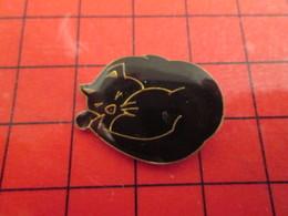 115b Pins Pin's / Rare & De Belle Qualité  THEME : ANIMAUX / CHAT NOIR EN PLEIN BOULOT - Animaux