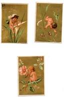 CHROMO Liebig Testu & Massin S 27 5 Médailles D'or 3 Grands Diplômes S27 Chérubins Amours La Série De 6 Chromos - Liebig