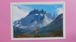CHILI - Parc National De Paine Dans Les Andes De Patagonie - Géographie
