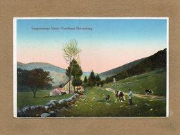 CPA - Environs De MUNSTER (68) - Aspect De La Ferme-Auberge-Maison Forestière Herrenberg Au Début Du Siècle - Frankrijk