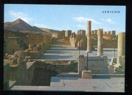 CPM Neuve Israël JERICHO Le Palais De Hisham - Israel