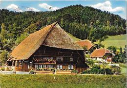 Schwarzwald - Schwarzwalder Bauernhaus - Hochschwarzwald
