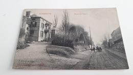 *SOMBREFFE  Avenue Du Calvaire Attelages Chien? Oblitéré Début 1900 - Sombreffe