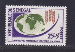 SENEGAL N°  216 ** MNH Neuf Sans Charnière, TB (D8645) Campagne Mondiale Contre La Faim - 1963 - Sénégal (1960-...)