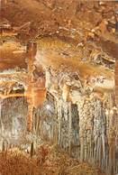 CPSM Israël-Grotte                          L2780 - Israel