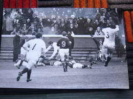 Photo Presse RUGBY ECOSSE SPRINGBOKS 1969 31 X 20 Cm - Rugby